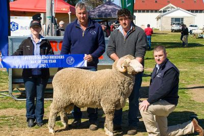 2017 Ram of The Year - Lach River Merinos